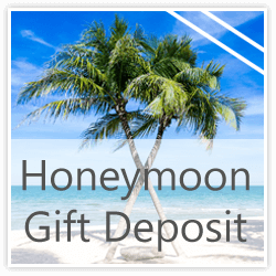 AllInclusive Honeymoon and Wedding Travel